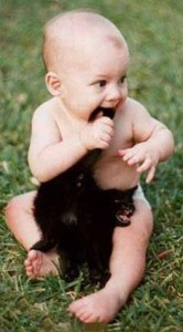 kitty cross