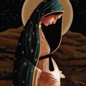 Pregnant BVM